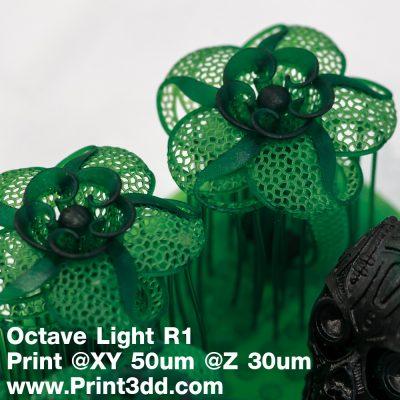 Octave Flower Ring Test