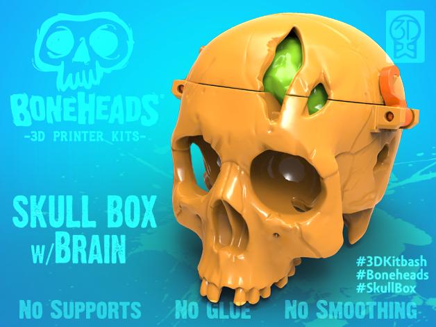 Skull Box with Brain