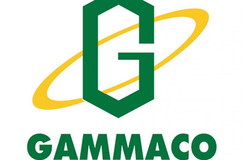 Gammago Flashforge Dreamer 2หัวฉีด