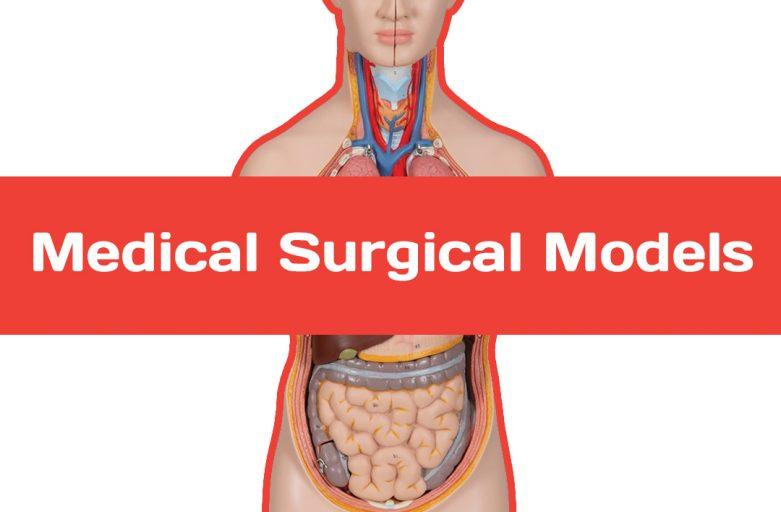 การสร้างแบบจำลอง 3 มิติขนาดเท่าของจริงช่วยให้แพทย์ผ่าตัดสำเร็จได้ง่ายขึ้น